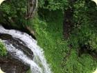 Amazonas in Kärnten