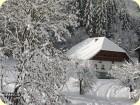 Waldbauernhaus am Talhof