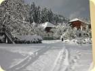 Wintermärchen in Kärnten.